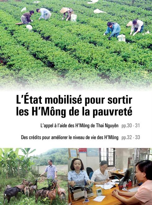 Des crédits pour améliorer le niveau de vie des H'Mông