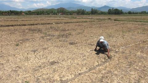 Sécheresse redoutée dans le Nord et le Tây Nguyên en raison d'El Niño