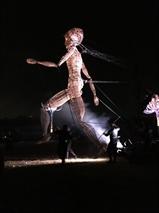 Un Festival de Huê marqué du sceau francophone