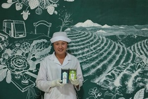 À la découverte de la plus ancienne usine de production de thé à Lâm Dông