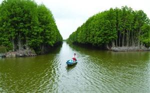 Cà Mau cherche à attirer des investissements dans le tourisme