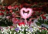 À l'approche de la Saint-Valentin (14 février), le marché des fleurs et cadeaux est très animé à Hanoï. Photo : Minh Quyêt/VNA/CVN