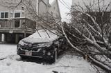 Le Nord-Est des États-Unis était sous la neige et la grêle, le 14 mars, sous l'emprise d'une tempête baptisée Stella. Photo : AFP/VNA/CVN