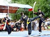 Le 4e tournoi international d'arts martiaux traditionnels à HCM-Ville