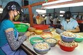 Le Vietnam face à la baisse des superficies d'anacardiers
