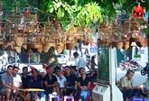 Écouter le chant des oiseaux au coeur de Hanoi