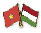Célébration de la Fête nationale de Hongrie à HCM-Ville
