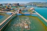 Delta du Mékong : construction d'un centre d'aquaculture