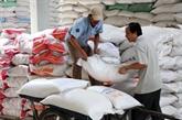 Plus de 3,2 millions de tonnes de riz exportées en six mois