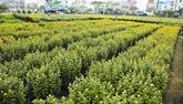 Une irrigation importante pour une agriculture performante