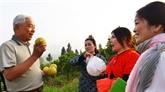 Un agronome Viêt kiêu au service des paysans