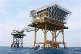 Avancée notable du projet pétrolier Biên Dông 1