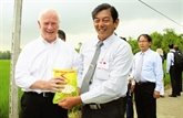 Un ingénieur agronome valorise le riz parfumé vietnamien