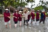 Le tourisme communautaire, atout de Quang Nam