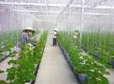 Multiplier les zones agricoles de hautes technologies