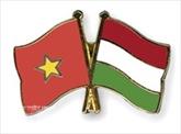 Vietnam-Hongrie : la coopération multiforme se renforce