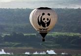 Biodiversité : moitié moins d'animaux sauvages sur Terre qu'il y a 40 ans