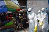 Ebola : les pays ouest-africains n'ont pas atteint les objectifs fixés par l'OMS