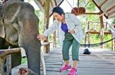 La Japonaise qui murmurait à l'oreille des éléphants