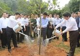 Lancement de la Fête de plantation d'arbres du Printemps Ât Mùi 2015
