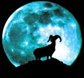 Des célébrités nées sous le signe de la Chèvre