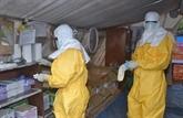 Ebola : résultats