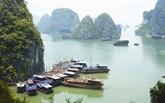 Baie de Ha Long, entre monts et merveilles