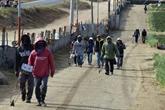 Des milliers d'ouvriers agricoles mexicains réclament de meilleures conditions de travail