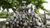 Les pierres légendaires d'An Giang