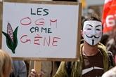 Manifestation massive contre les multinationales des OGM et des pesticides