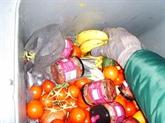 La FAO appelle à réduire les pertes et le gaspillage alimentaires