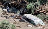 Inondations meurtrières à Tbilissi, les animaux sauvages du zoo décimés