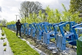 Dans le centre de l'Angleterre, on récolte aussi les chaises