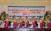 Célébration des 60 ans de l'établissement des relations diplomatiques Vietnam - Indonésie