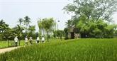 Duong Lâm, un village en latérite séculaire