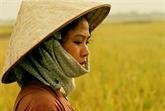 Le film vietnamien Nostalgie de la campagne projeté en Suisse
