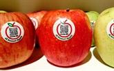 Des pommes japonaises Aomori arrivent au Vietnam
