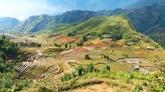 Étudiants : le Vietnam dans le Top 10 des destinations touristiques idéales
