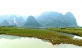 Le tournage de Kong : Skull Island à partir du 23 février au Vietnam