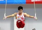 Deux gymnastes vietnamiens qualifiés aux JO 2016