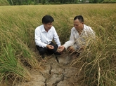 Le delta du Mékong, futur désastre ou terre d'opportunités ?