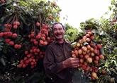 De plus en plus de produits vietnamiens dans des supermarchés européens