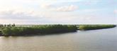 L'îlot Côn Vành, un petit bout de nature sauvage