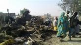 Bombardement au Nigeria :