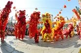 Cân Tho : 4e Festival national de danses de la licorne et du dragon