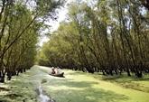 Le Vietnam célébrera la Journée mondiale des zones humides