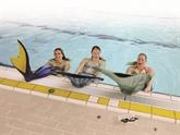 Des apprenties sirènes dans les piscines néerlandaises