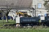Grippe aviaire : 17 pays touchés en Europe, selon l'OIE