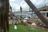 Irma : des mesures pour la reprise économique