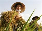 Honorer le talent, la créativité des agriculteurs vietnamiens